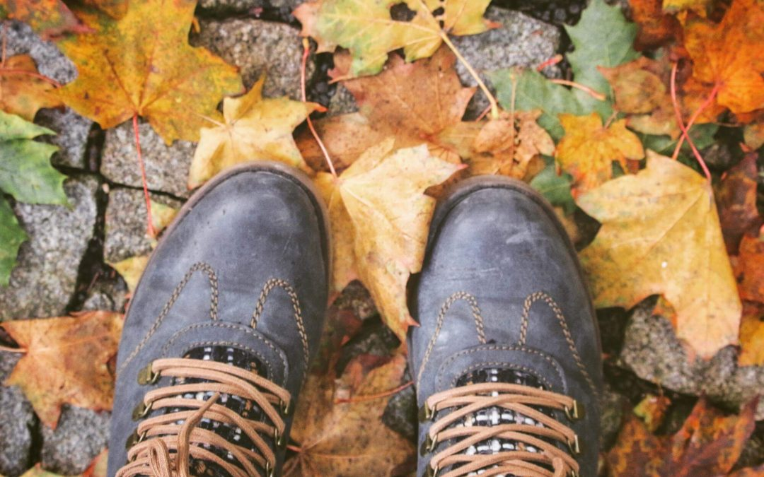 Feeling Festive: 5 Fun Activities to Enjoy This Fall